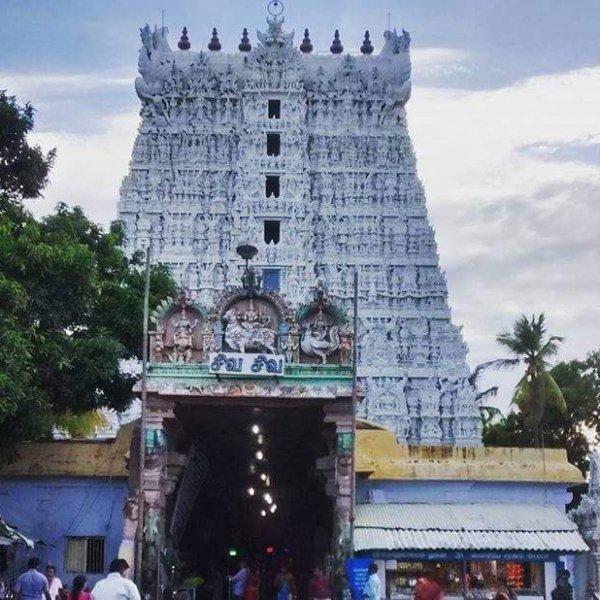 சுசீந்திரத்தில் இன்று தேர்த் திருவிழா! திரளான பக்தர்கள் குவிந்தனர்