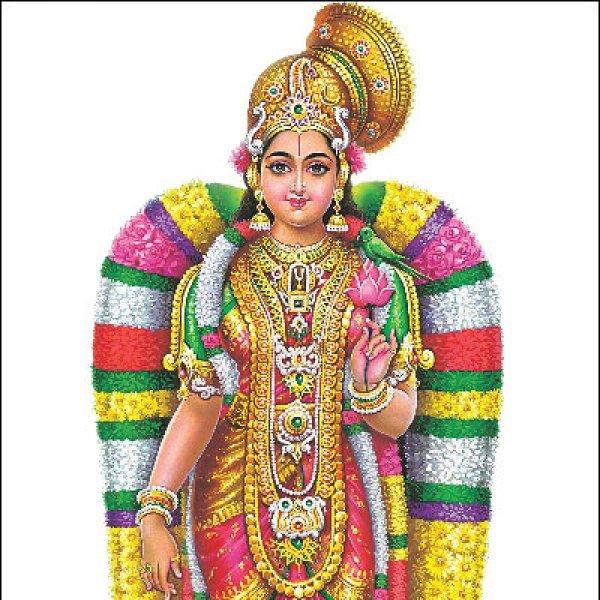 கூடாரவல்லி... மானுடப் பெண், மாதவனை மணாளனாகப் பெற்ற மகத்தான நாள்! #Margazhi