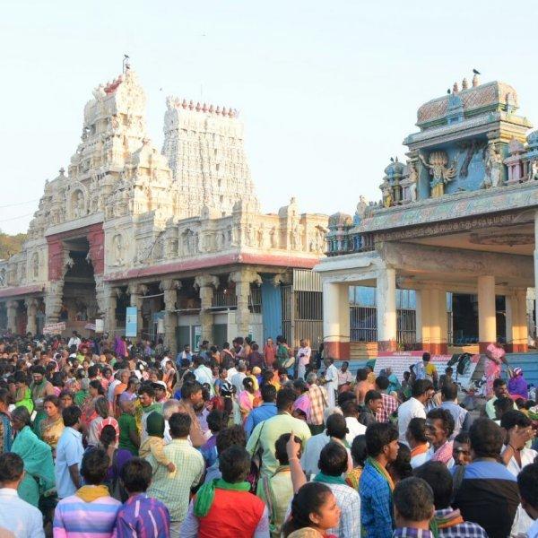 தைப்பூசத் திருவிழா : திருச்செந்தூரில் அலைமோதும் பக்தர்கள் கூட்டம்