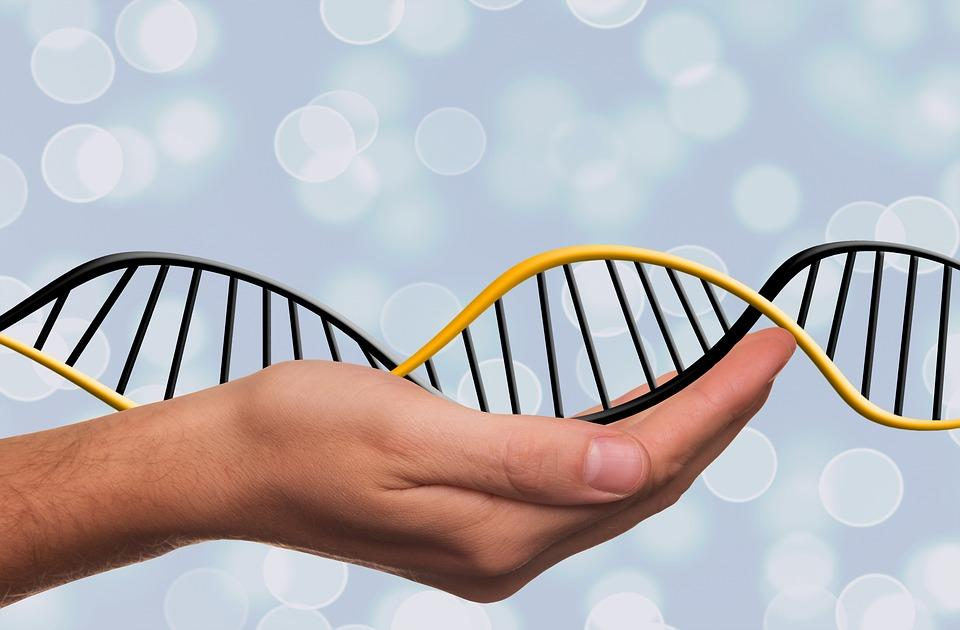 DNA டெஸ்ட்