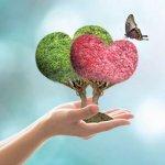 ``அவளுக்கு என்னைத் தெரியாது... எனக்கு அவளைத் தெரியும்!'' - நெகிழவைக்கும் காதல் கதை #FeelGoodStory #LetsLove