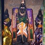 கோவனூர் முருகன் கோயில்... சித்தர்கள் வந்து பூநீர் பருகும் அதிசயம்!