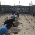 ராமேஸ்வரம், தனுஷ்கோடி கடற்கரையில் ஒரே நாளில் 1304 ஆமை முட்டைகள் சேகரிப்பு..!