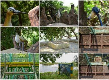 வேடந்தாங்கல் ஓகே... சென்னைக்கு அருகிலிருக்கும் கரிக்கிலி சரணாலயம் போயிருக்கீங்களா?