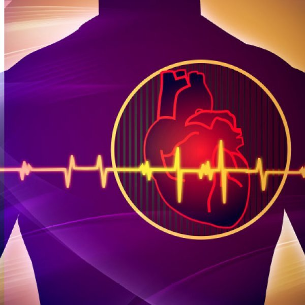 Four out of hundred have heart diseases... How to prevent heart attacks?