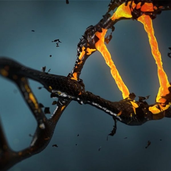 DNA டெஸ்ட் பாதுகாப்பானதா...நம் DNA தகவல்கள் வெளியே கசிந்தால் என்ன நடக்கும்?