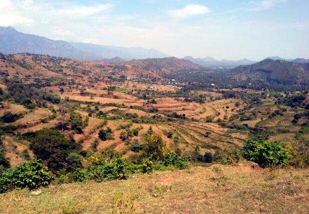 கோபனாரி