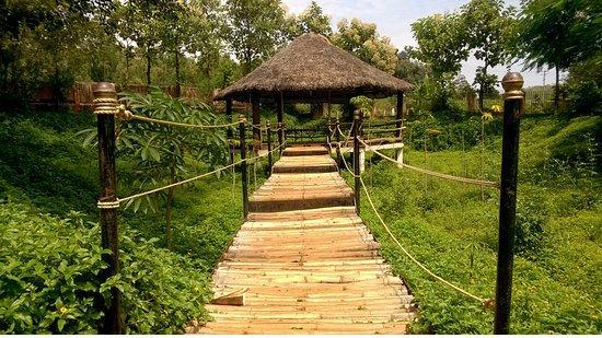 nature park 3