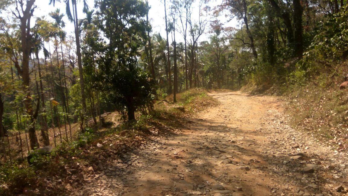 அட்டப்பாடி மலைவாழ் மக்கள் இருக்கும் பகுதிக்கு செல்லும் பாதுகாப்பற்ற சாலை
