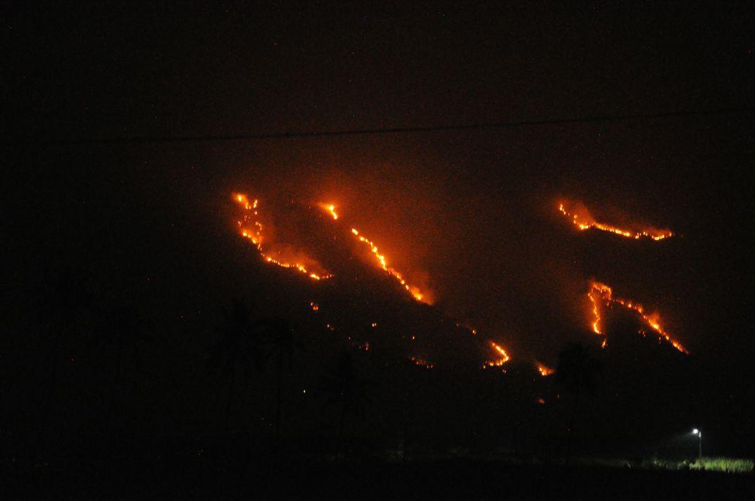 குரங்கணி காட்டுத்தீ