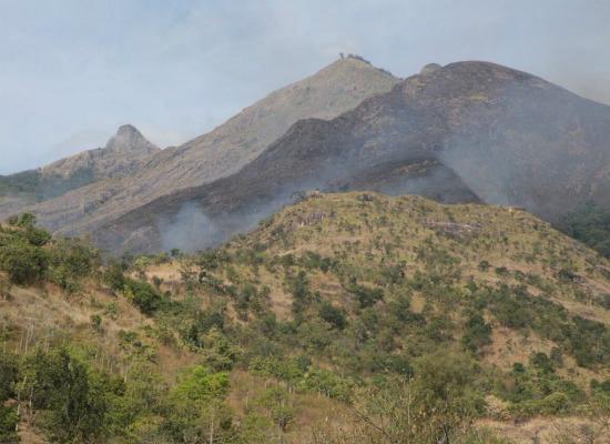 குரங்கணி, kurangani
