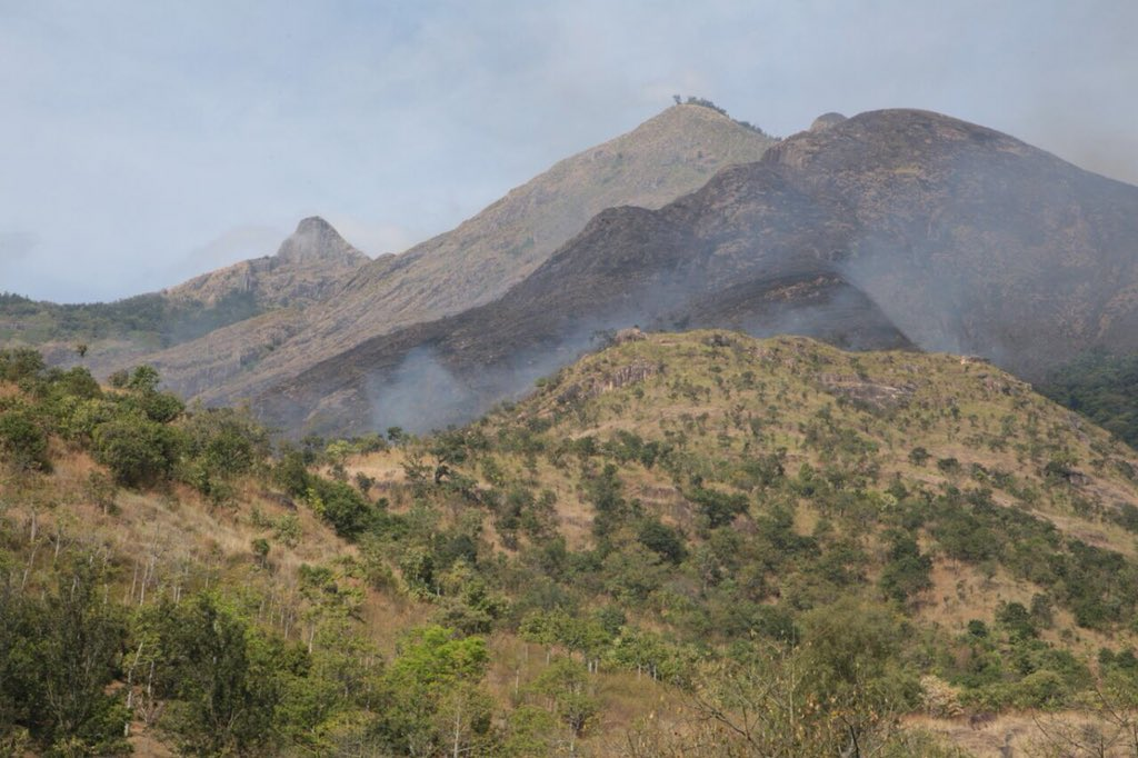 குரங்கணி