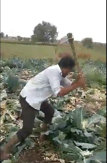 மகாராஷ்டிர விவசாயி