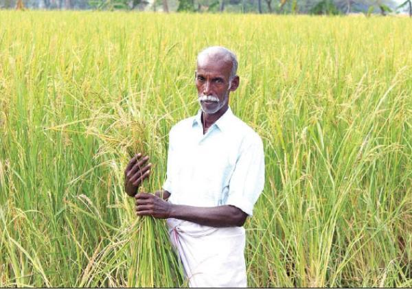 Farmer Gnanaprakasam
