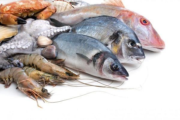 Fish for memory
