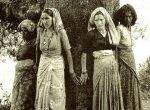 """``சூழலியல்தான் நிரந்தரப் பொருளாதாரம்!"""" - இந்திய அரசுக்குப் பாடம் சொன்ன பெண்கள்  #ChipkoMovement"""