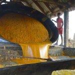 முகலாயர் காலம் முதல் இப்போது வரை... புகழ்பெற்ற கவுந்தம்பாடி வெல்லம் தயாராவது இப்படித்தான்!