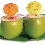 Tender Coconuts protect from summer heat, Health deficiencies