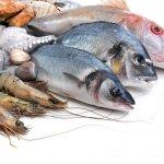 Fish, Turmeric and Vallarai(Centella asiatica) – Memory enhancers for students!