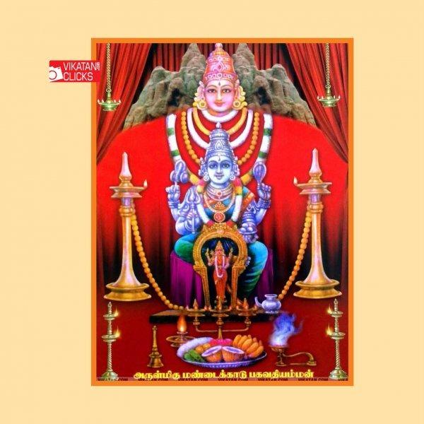 பனங்காட்டில் சுயம்புவாக எழுந்த மண்டைக்காடு பகவதியம்மா! #VikatanPhotoStory