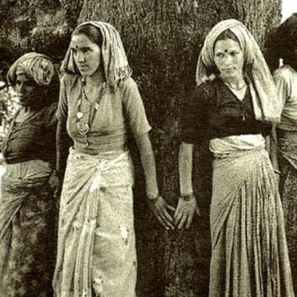 `எங்களைக் கொன்றுவிட்டு மரங்களைத் தொடுங்கள்!' - இந்திய பெண்களைப் போற்றும் கூகுள் டூடுள்  #ChipkoMovement