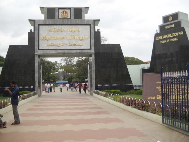 வண்டலூர் பூங்கா