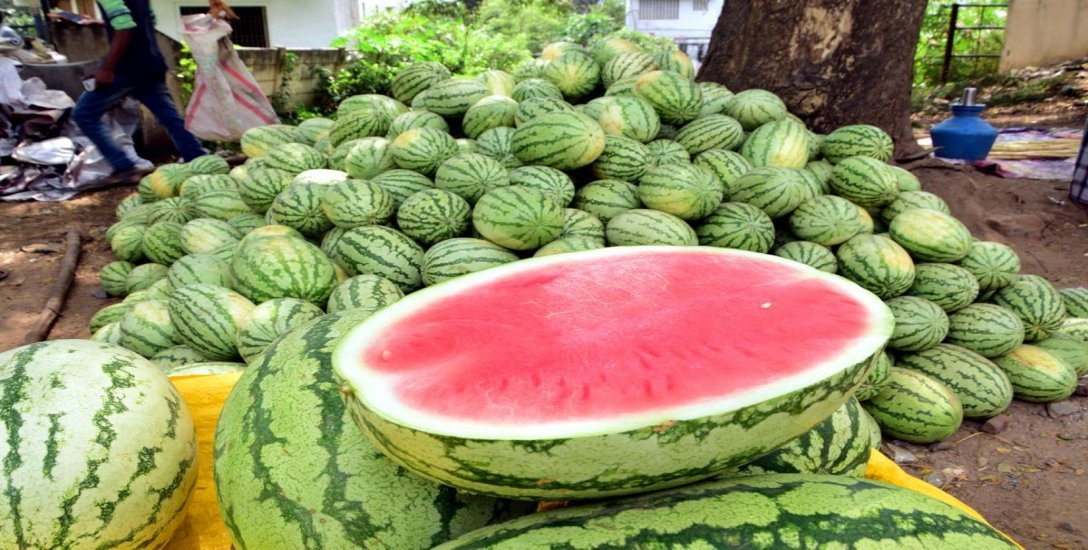 Multiple Benefits of Watermelon