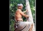 பனை தந்த பணக்கார வாழ்க்கை... மாதம் லட்ச ரூபாய் சம்பாதிக்கும் சலீமான்!
