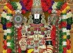 ஸ்பெயின் குங்குமப்பூ, சீனப் புனுகு படைக்கப்படும் திருப்பதி பெருமாளுக்கு கறிவேப்பிலையும் கனகாம்பரமும் ஆகாது... ஏன்? #Tirupati
