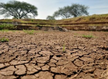 """Practical Solution to Cauvery Water Dispute... """"No one to take it"""" says Agri Associations"""