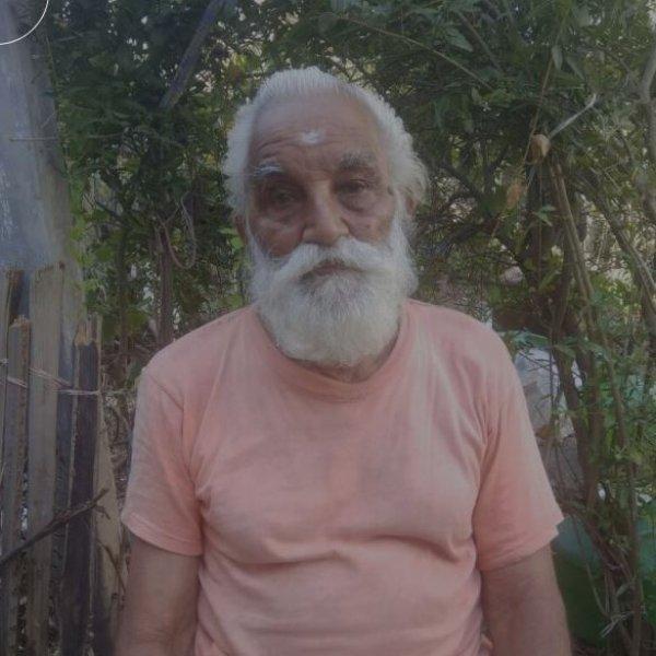 பெயர்: வேலுச்சாமி தாத்தா... வயது: 86... வேலை: மரக்கன்றுகளை டோர் டெலிவரி செய்வது!