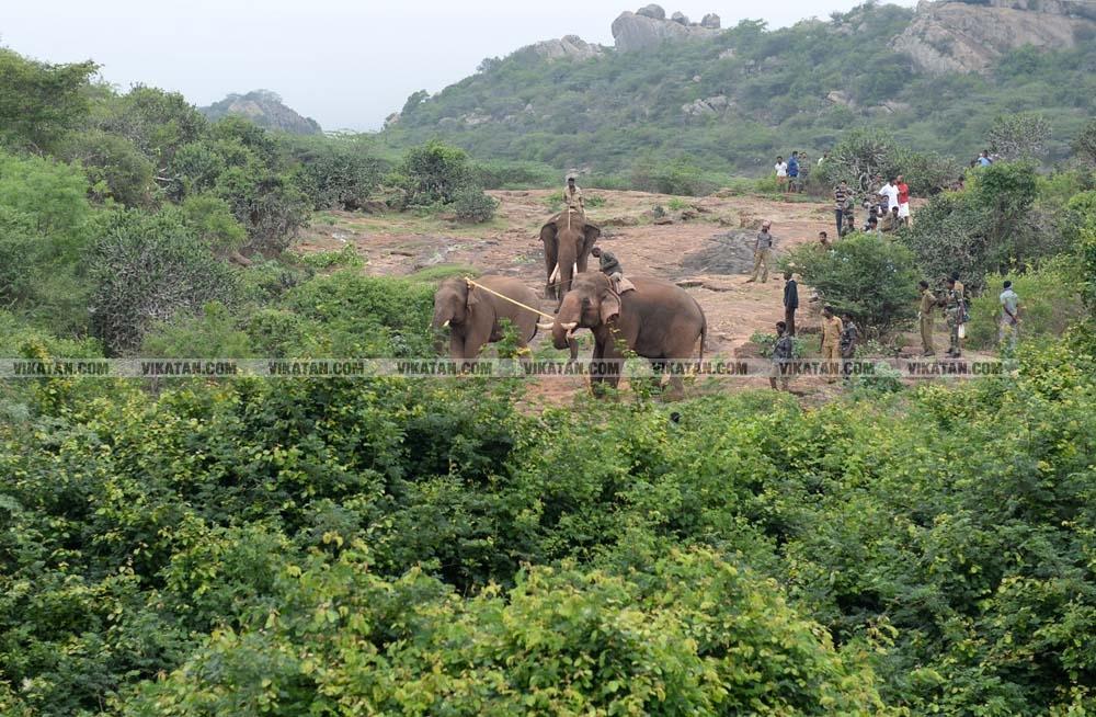 மதுக்கரை மகாராஜா