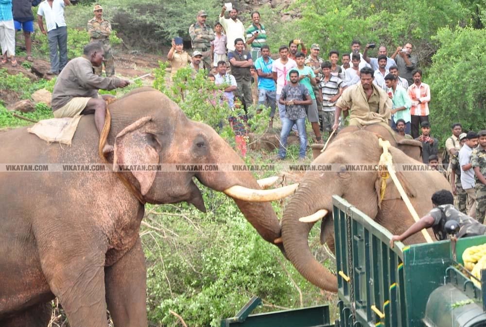 சுஜய் கும்கி