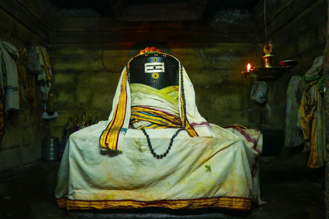 கார்க்கோடகன்