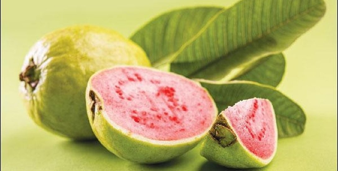 Multiple Benefits of Guava-Prevents Cancer, Improves Eye vision, Increases Immunity