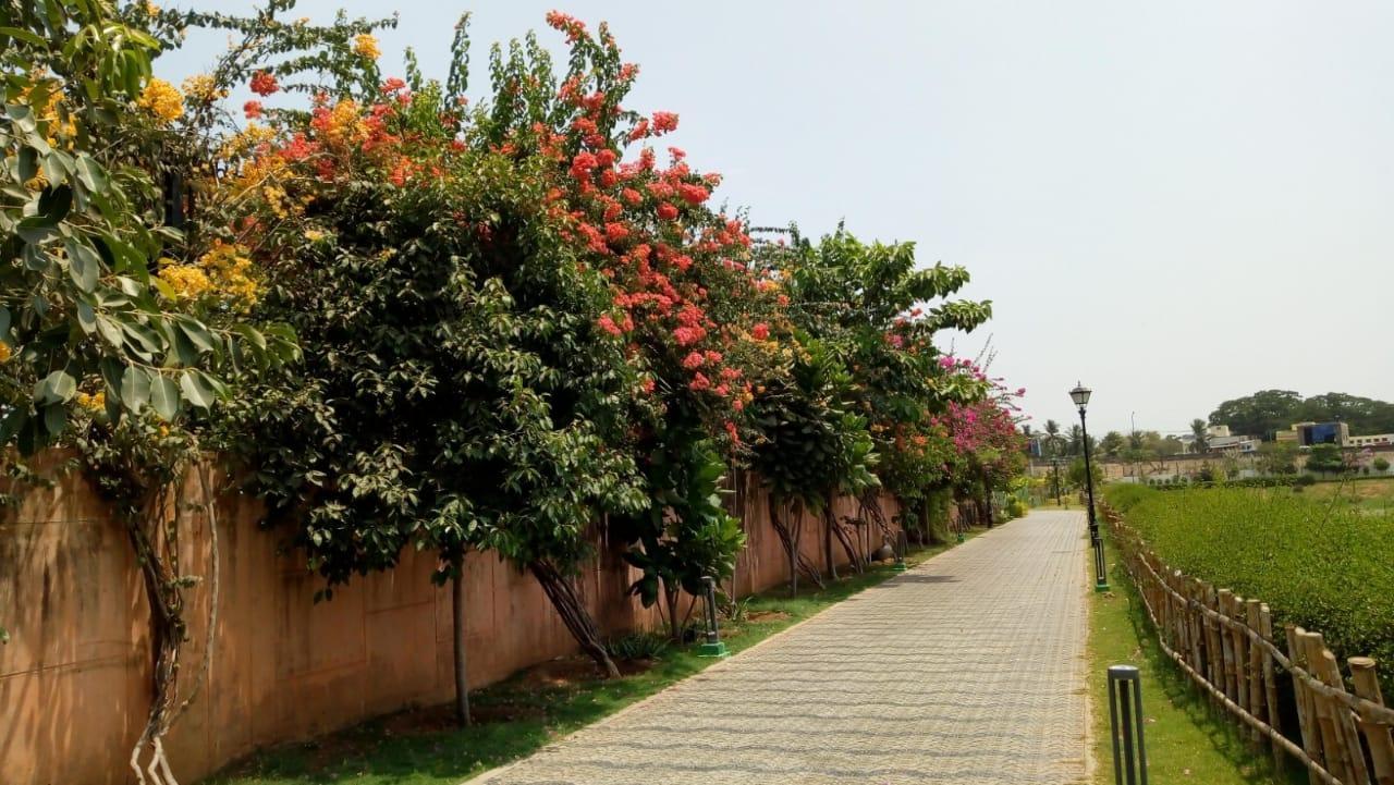 சென்னைப் பூங்கா