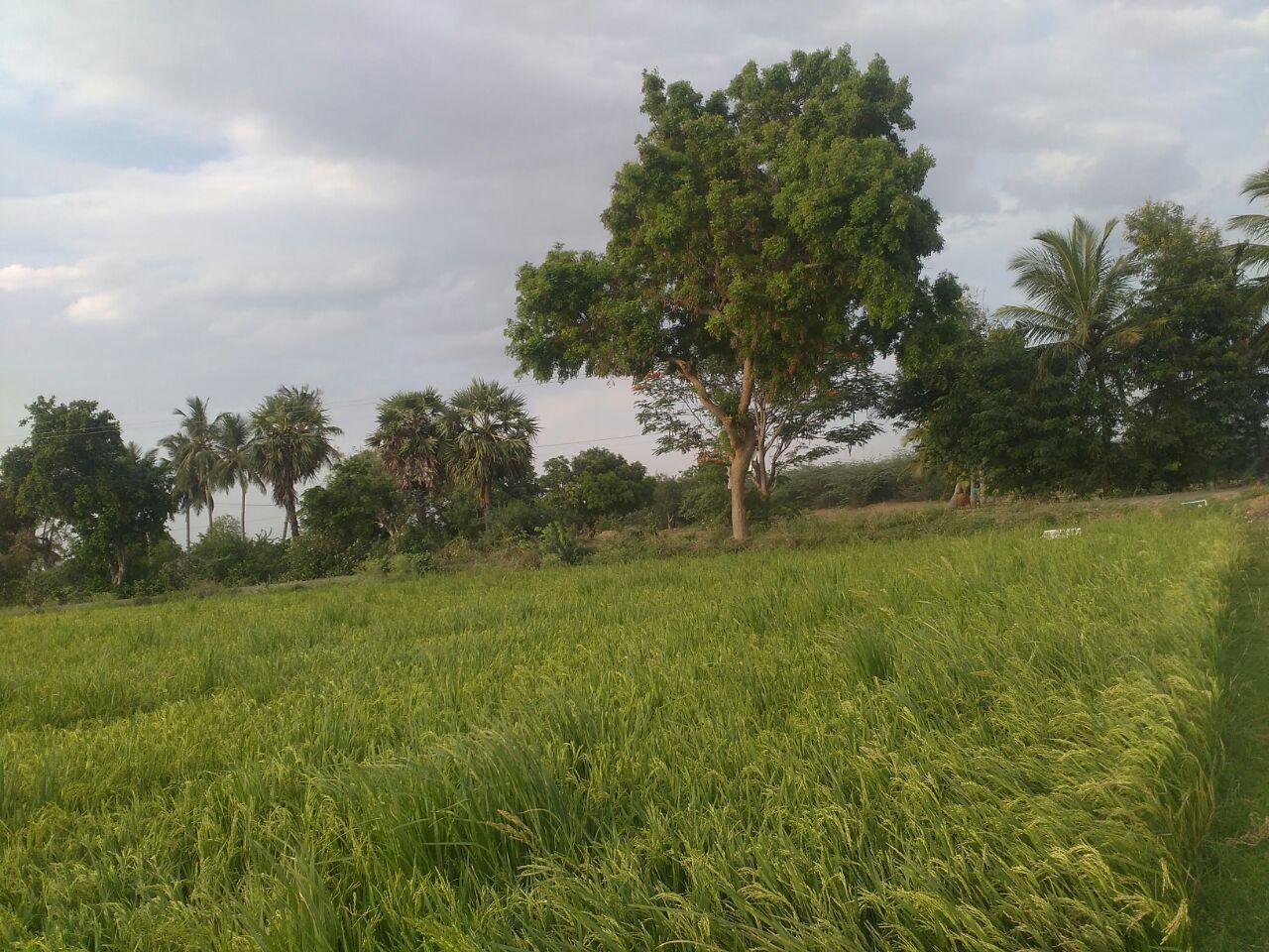 காஞ்சிபுரம், சேலம்-சென்னை 8 வழி சாலை