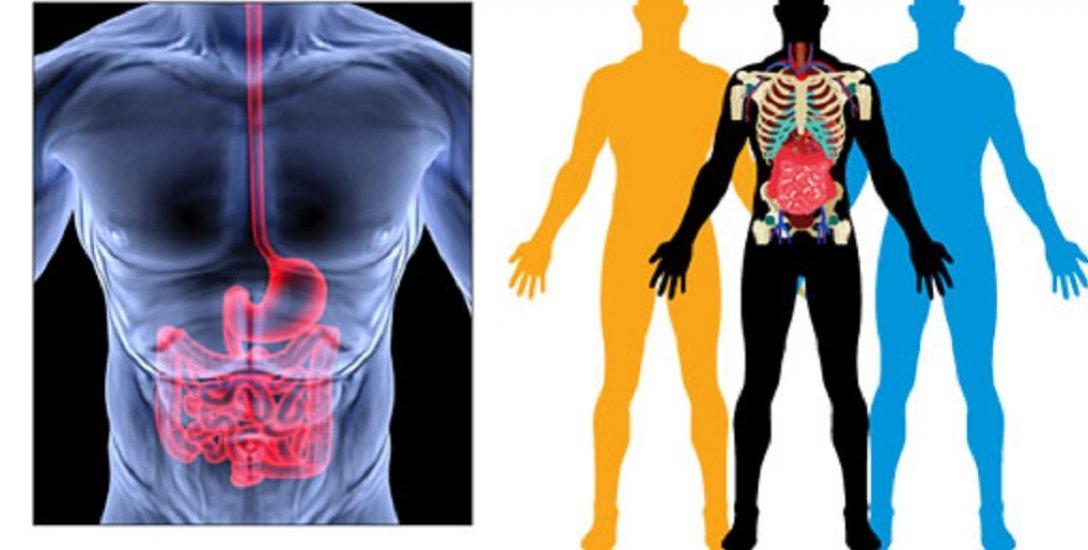 வயிற்றுப்போக்கு ஏற்படுவது ஏன்? அறிகுறிகள், தடுக்கும் வழிமுறைகள்! #Diarrhoea