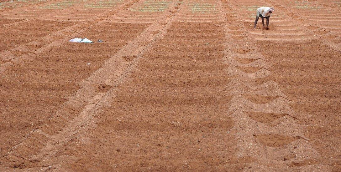 நில உச்ச வரம்புச் சட்டம் மூலம் கார்ப்பரேட் கம்பெனிகளுக்குத் தாரை வார்க்கப்படும் விவசாய நிலங்கள்