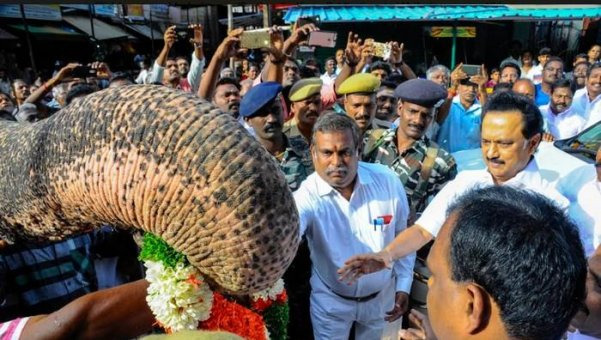 பூரண கும்ப மரியாதை... யானை ஆசீர்வாதம்... ஸ்ரீரங்கத்தில் ஸ்டாலினுக்கு நடந்த வரவேற்பு