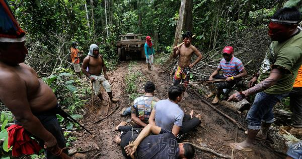 தெம்பே பழங்குடி - Amazon