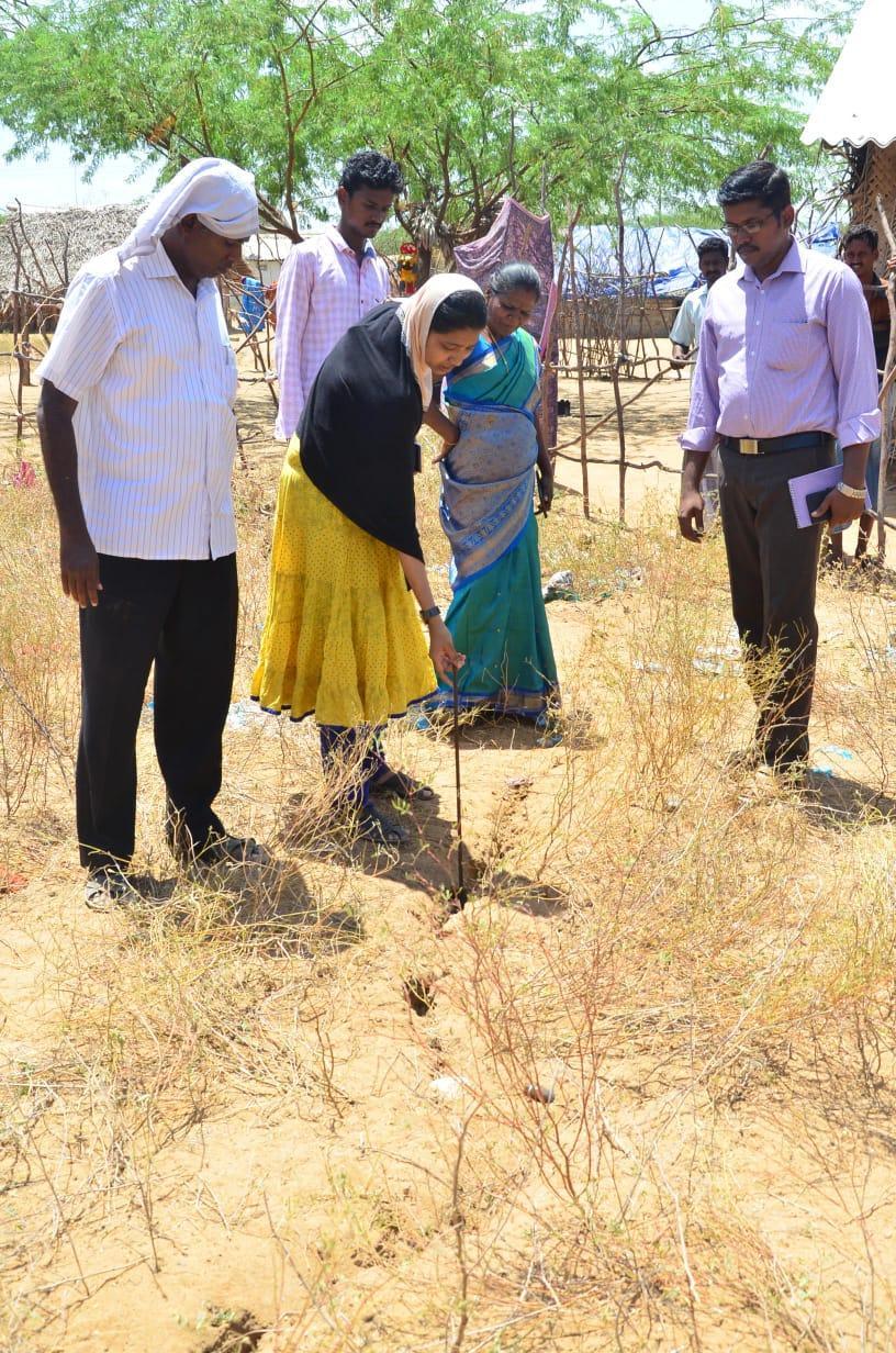 திருப்புல்லாணி பகுதியில் ஏற்பட்ட நிலவெடிப்பினை ஆய்வு செய்யும் அலுவலர்கள்