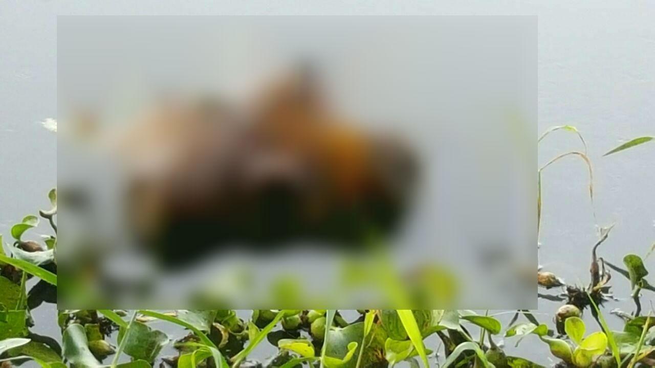 மிதந்து வந்த உடல் பாகம்