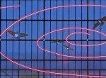 """""""அன்னாசி பழத்துக்கும் #FibonacciSeries க்கும் என்ன தொடர்பு?"""" - ஜாலியா படிக்கலாம் கணக்கு"""