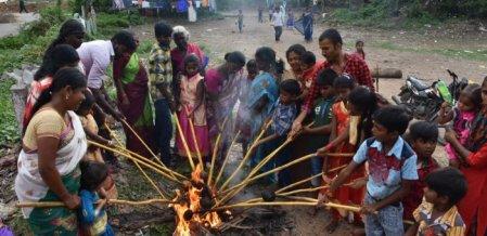 கோலாகலமாக நடைபெற்ற தேங்காய் சுடும் பண்டிகை - கொங்கு மக்கள் உற்சாகம்!