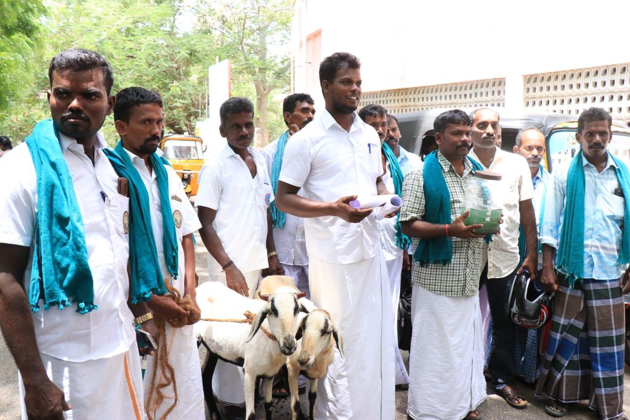 ஆடு வளர்ப்போர் சங்கத்தினர் ஆடுகளுடன் மனு கொடுக்க வந்தனர்