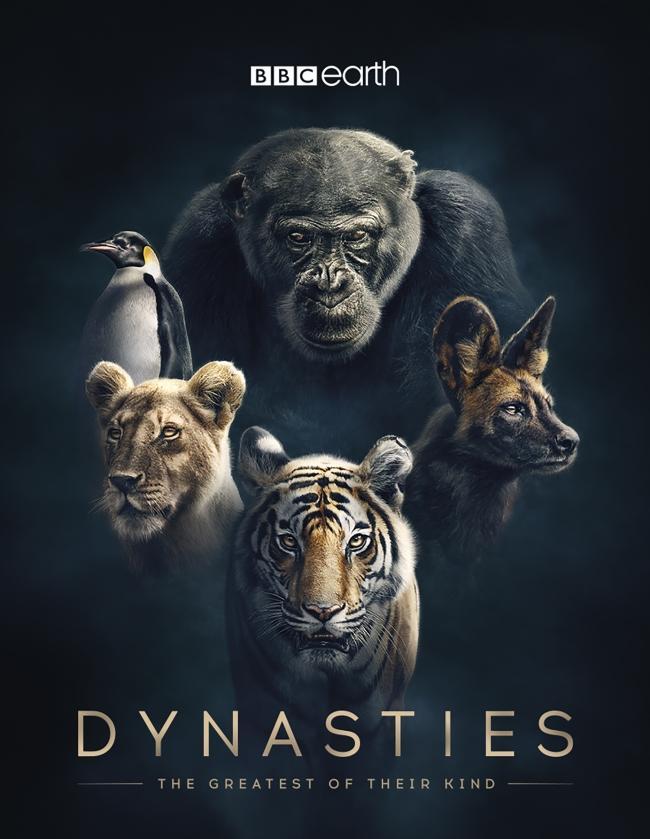 பிபிசி Dynasties