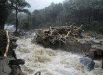 `மீண்டு வா கடவுளின் தேசமே..!'- கேரளாவுக்காகப் பிரார்த்திக்கும் இந்தியா #KeralaFloods