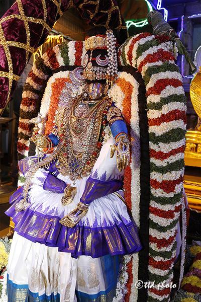 மோகினி அவதாரம்