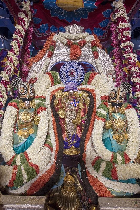 திருப்பதி பிரம்மோற்சவம்